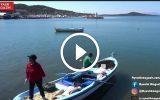 Çok Faydalı Olan Deniz Kestanesi Paylaşılamıyor